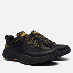 Мужские кроссовки Hoka One One Speedgoat 4 Gore-Tex Anthracite/Dark Gull Grey