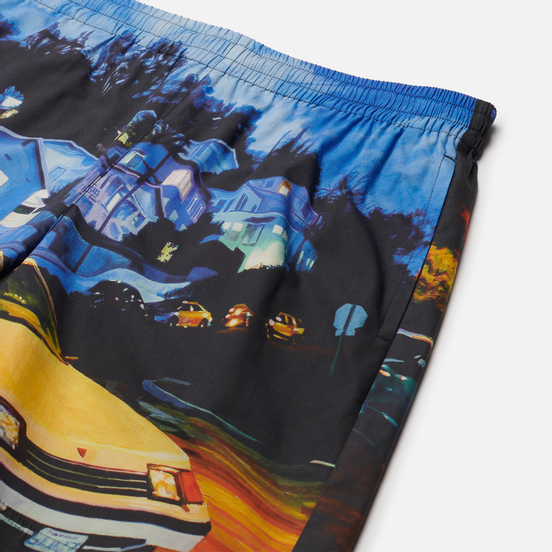 Мужские шорты MSGM x Seth Armstrong Capsule Print 1 Multicolor