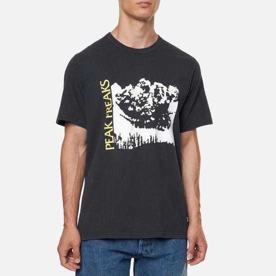 Мужская футболка Levi's Skateboarding Graphic LSC Limelight Peak Freak Multi