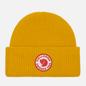 Шапка Fjallraven 1960 Logo Mustard Yellow фото - 0