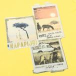Детская футболка Napapijri K Spill Dandelion фото- 2