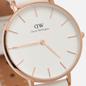 Наручные часы Daniel Wellington Petite Bondi White/Rose Gold/Eggshell White фото - 2