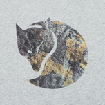 Мужская футболка Fjallraven Rock Logo Grey фото- 2