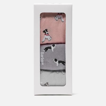 Комплект женских носков Barbour Mixed Dog Gift Box Multicolor