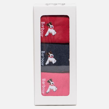 Комплект женских носков Barbour Terrier Giftbox Navy/Raspberry