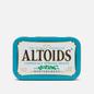 Леденцы Altoids Wintergreen Curiosly Strong фото - 0