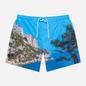 Мужские шорты Lacoste Lace-Up Waist Print Swim Ibiza/White фото - 0