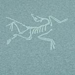 Мужская футболка Arcteryx Archaeopteryx SS Heathered фото- 2