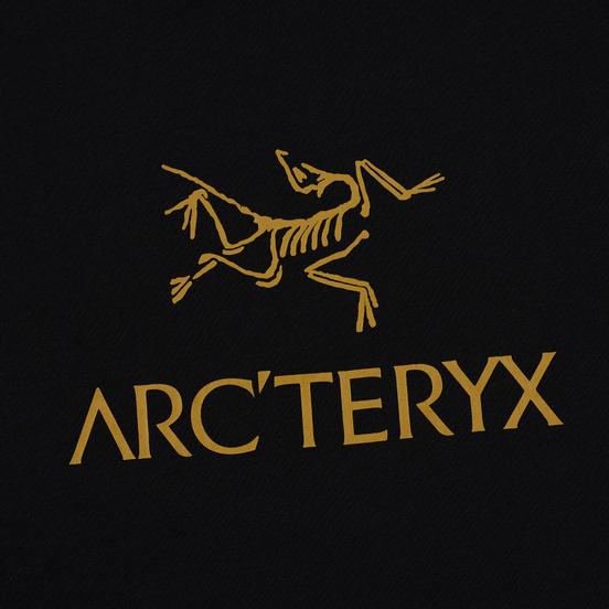 Мужская футболка Arcteryx ArcWord Black