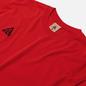 Мужская футболка Nike ACG NRG Logo University Red/Black фото - 1