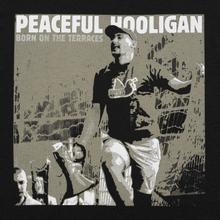 Мужская футболка Peaceful Hooligan Fanatic Black фото- 2