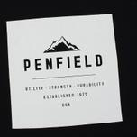 Мужская футболка Penfield Kemp Black фото- 2