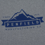 Мужская футболка Penfield Mountain Logo Grey/Blue фото- 2