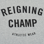 Мужская футболка Reigning Champ Gym Logo SS Tee Heather Grey фото- 2