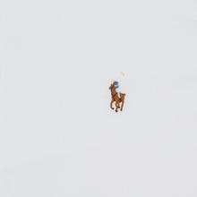 Мужская рубашка Polo Ralph Lauren Slim Fit Oxford White фото- 2