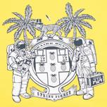 Billionaire Boys Club Vacation Reversible Crewneck Men`s Sweatshirt Navy/Yellow photo- 6