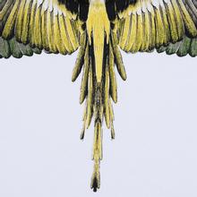 Мужская толстовка Marcelo Burlon Yellow Wings Hoodie White/Multicolor фото- 4