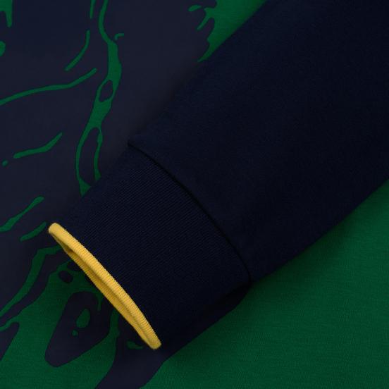 Мужская толстовка Polo Ralph Lauren Big Pony Polo Color Block Jerry Green/Cruise Navy/Yellow Fin