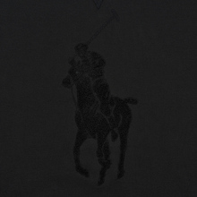 Мужская толстовка Polo Ralph Lauren Signature Embroidered Big Pony Crew Neck Black фото- 2