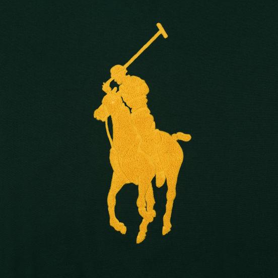 Мужская толстовка Polo Ralph Lauren Signature Embroidered Big Pony Crew Neck College Green