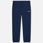 Мужские брюки Reebok Archive Vector Collegiate Navy фото- 0