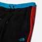 Мужские брюки The North Face 92 Extreme Fleece TNF Black Combo фото - 1