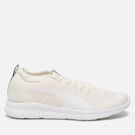 Мужские кроссовки Puma Ignite evoKNIT 3D Triple White