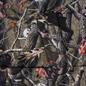Мужской пуховик RIPNDIP Nerm & Jerm Tree Camo Puffer Multi фото - 2