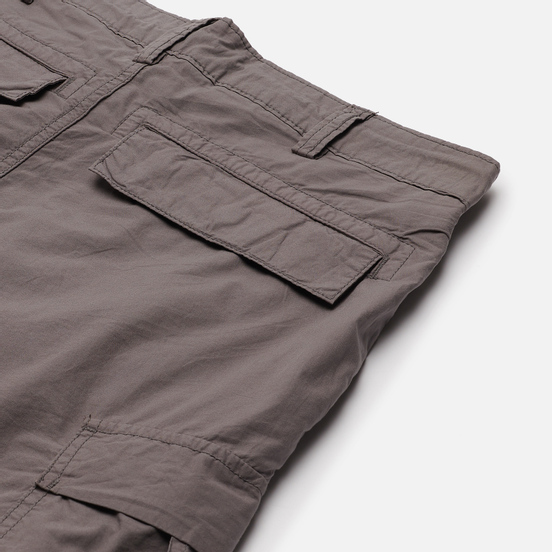 Мужские шорты Napapijri Hanakapi Grey Gargoyle
