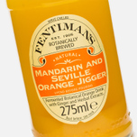 Газированная вода Fentimans Mandarin & Seville Orange Jigger 0.275l фото- 3