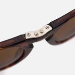 Persol Crystal Icons Sunglasses Havana/Brown photo- 3