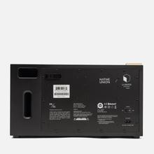 Портативная акустика Native Union x La Boite Concept PR/01 Black Wood фото- 5