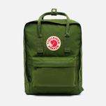 Fjallraven Kanken Backpack Leaf Green photo- 0