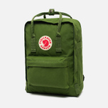Fjallraven Kanken Backpack Leaf Green photo- 1