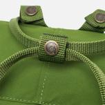 Fjallraven Kanken Backpack Leaf Green photo- 4