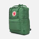 Рюкзак Fjallraven Kanken Salvia Green фото- 1