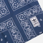 Мужские шорты adidas Originals x Neighborhood Bandanna Pt Blue фото- 1