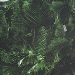 Мужская футболка Carhartt WIP Night Vision Pocket Multicolor фото- 2