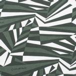 Мужская футболка MA.Strum Razzle Dazzle Printed Greens фото- 2