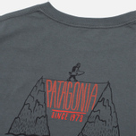 Мужская футболка Patagonia Alpine Surfer Forge Grey фото- 4