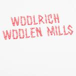 Мужская футболка Woolrich Woolen Mills Bamboo Print White фото- 2