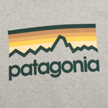 Patagonia Line Logo Midweight Men's Hoody Feather Grey photo- 2