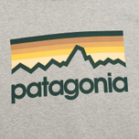 Мужская толстовка Patagonia Line Logo Midweight Feather Grey фото- 2