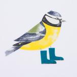 Женская футболка Barbour Brae Bird White фото- 2