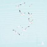 Женская футболка Barbour Reninshaw Seagull Aqua фото- 2