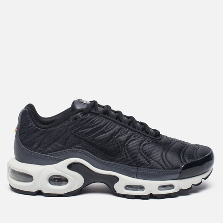Женские кроссовки Nike Air Max Plus SE Metallic Hematite/Black/Summit White