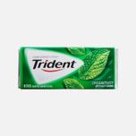 Жевательная резинка Trident Spearmint фото- 0