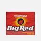 Жевательная резинка Wrigley's Big Red Cinnamon фото - 0