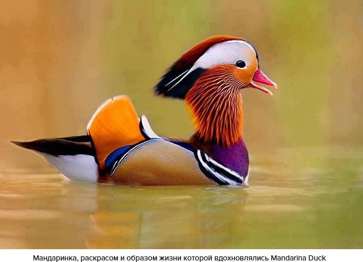 Мандаринка, расскрасом и образом жизни которой вдохновились Mandarina Duck