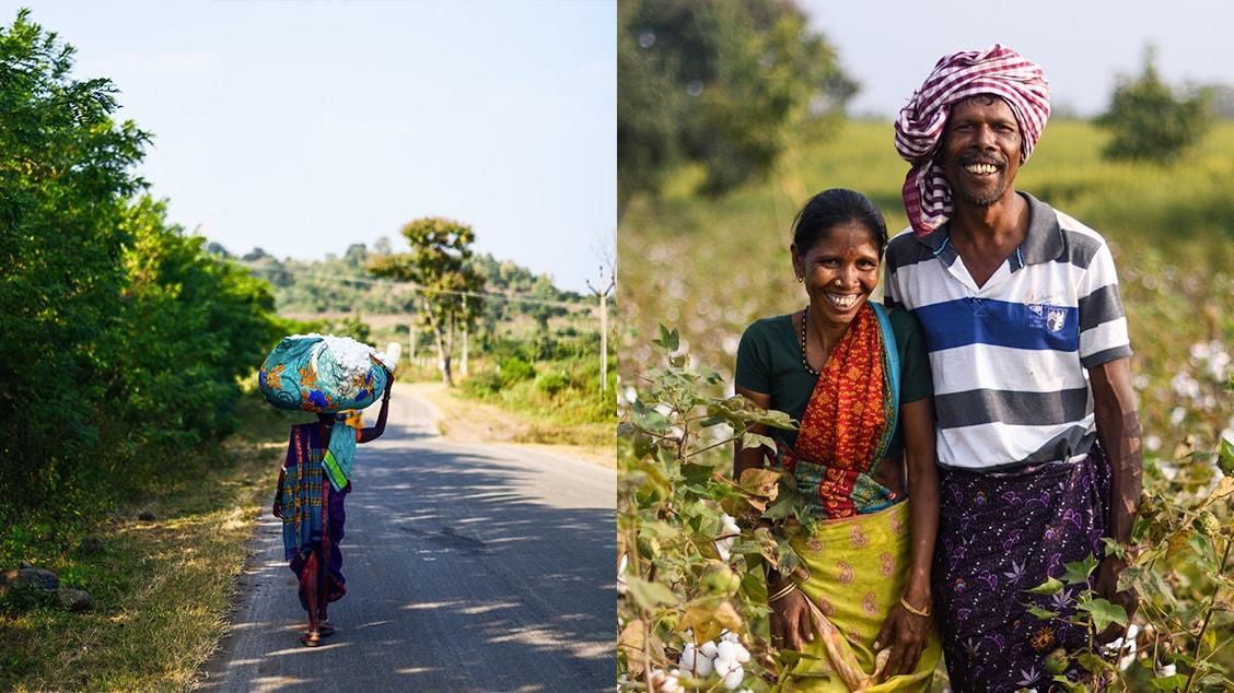 Органический хлопок выращивается на небольших фермах в Индии